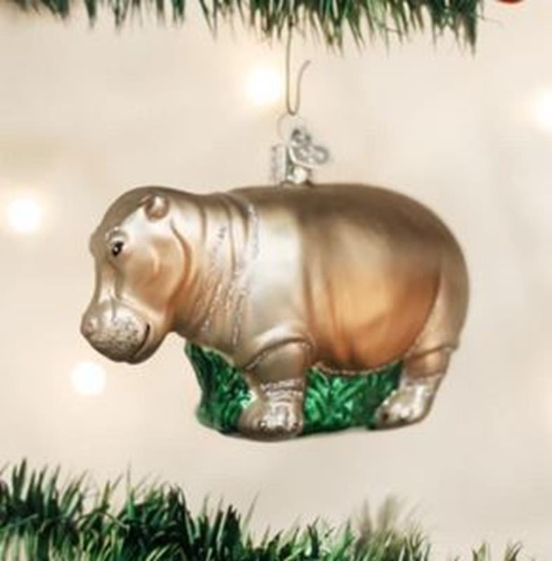 Hippopotamus,12158