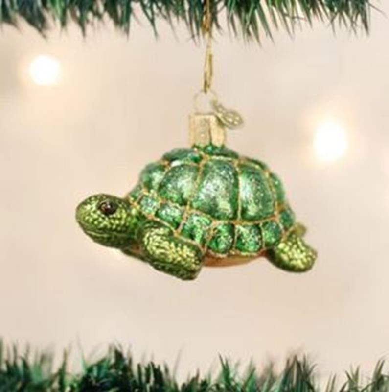 Tortoise,12198