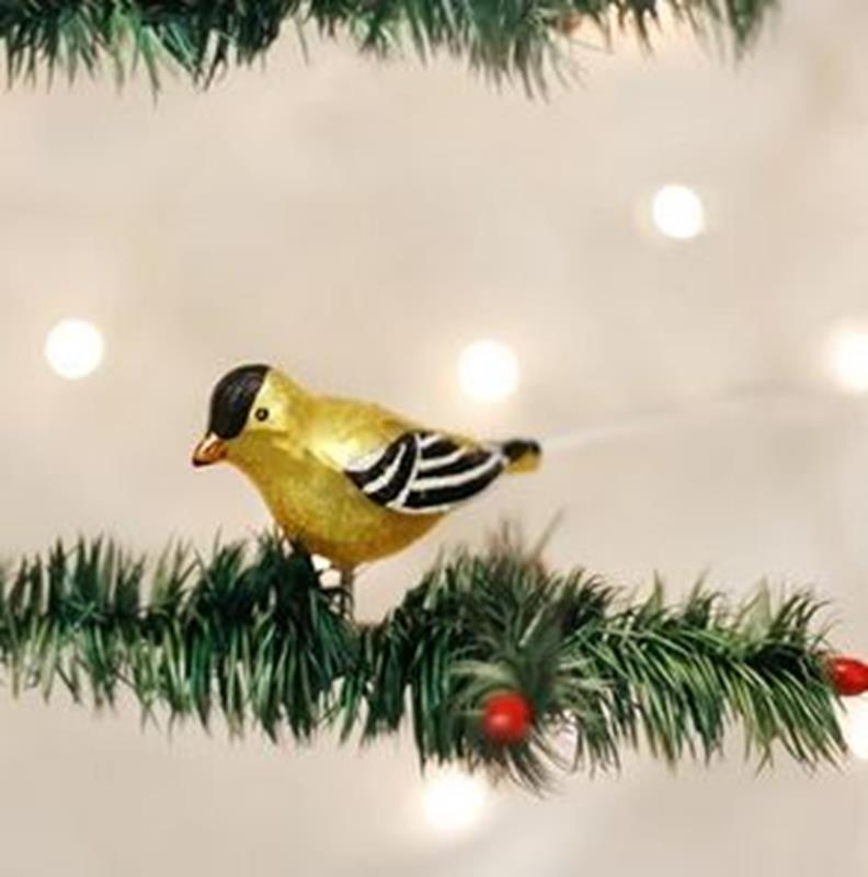 Western Goldfinch,18038